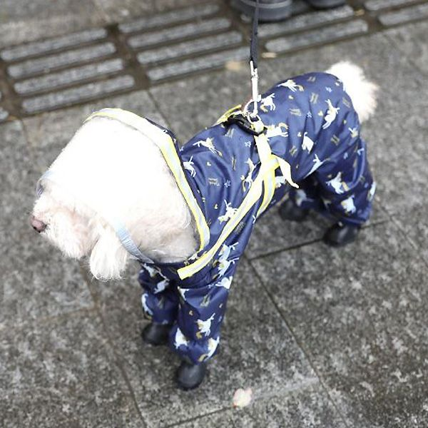waterproof with paws for dogs