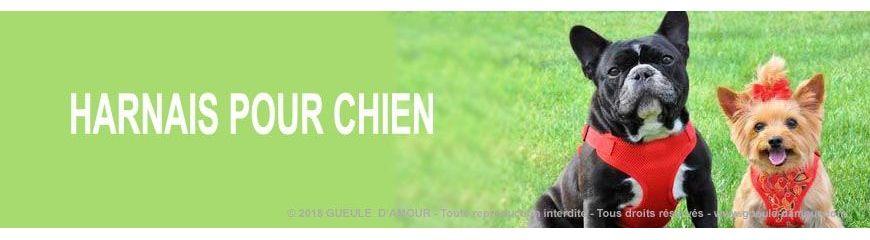 Dog harness anti-choke