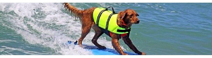 Gilets de sauvetage pour chien