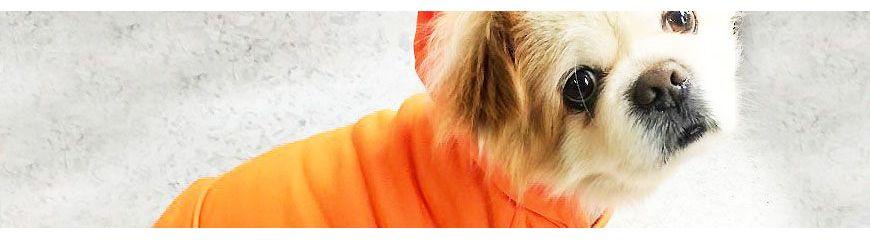 Sweats pour chien à capuche
