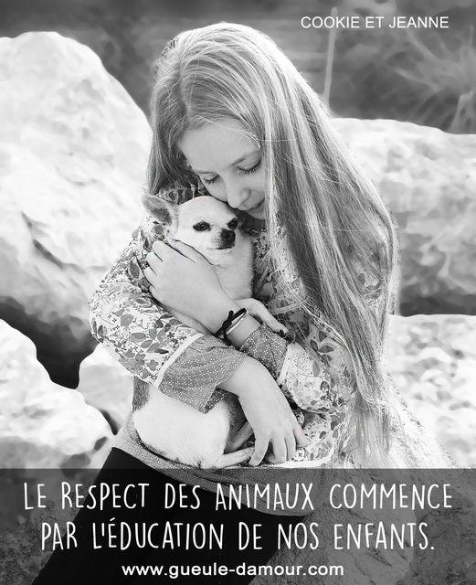 Le respect des animaux commence par l'éducation de nos enfants