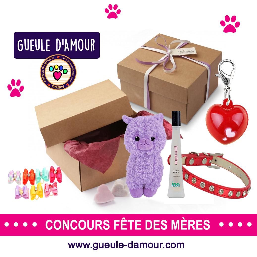 Gagnez des cadeaux pour votre chien ou chat !