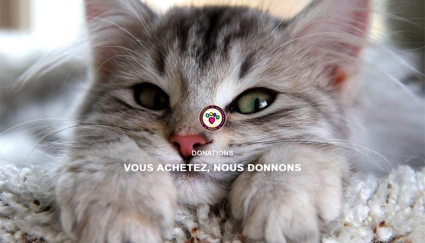 Donation pour les animaux - Gueule d'Amour boutique pour chien en Lorraine