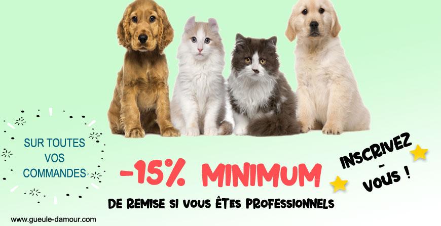 Fournisseur d'accessoires pour chien et chat