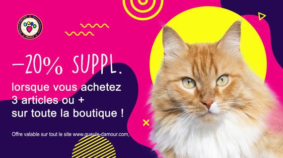 Promotions Pour Chiens et Chats