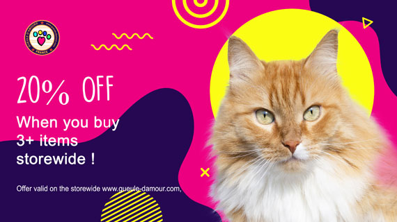 Promotions For Dogs and Cats