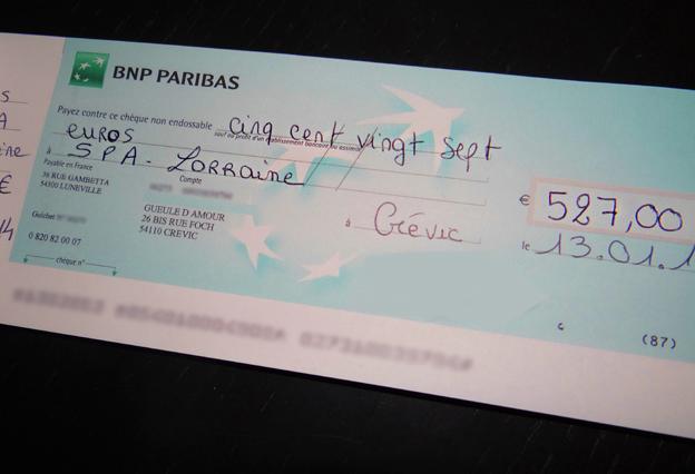 Dons pour la SPA Lorraine en faveur des animaux chiens et chats Amance Velaine Gueule d'amour