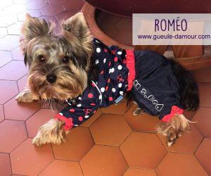 Le superbe Roméo dans sa combi imperméable !