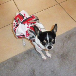 Robe pour chien à fleurs hawaienne - rouge / Love / Taille XS