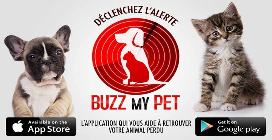 Buzz My Pet : Une application qui a du chien !