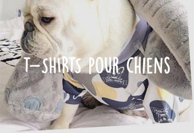 Les t-shirts pour chien