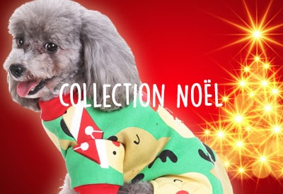 Collection Noël