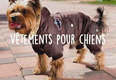 Les vêtements pour chien